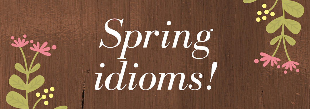 5 idioms inspired by Spring