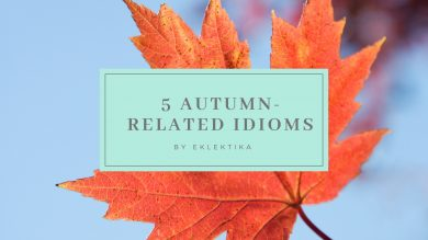 5 autumn-related idioms to begin the season right!